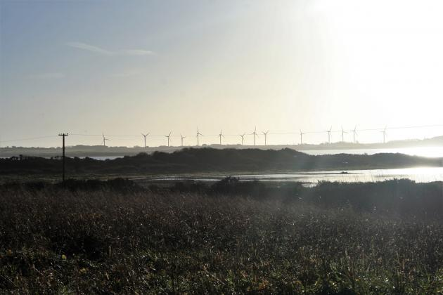 Windmills near Our Lady's Island in County Wexford in Ireland | Credit: Tanya Thompson